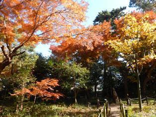 アリタキ植物園.JPG